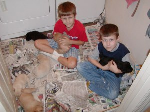 Gerrit & JJ in the puppy room