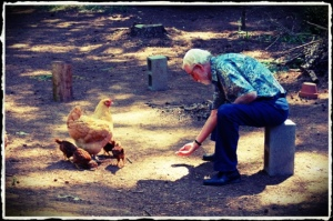 Papa, Mama Bonnie & the chicks